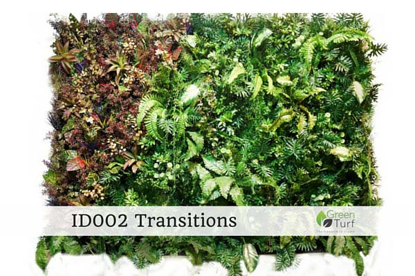 ID002 Transtions