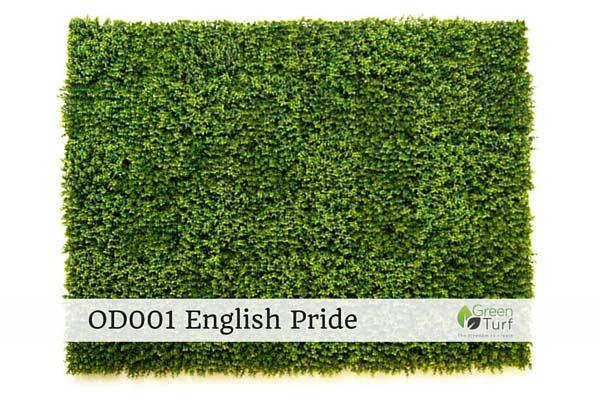 OD001 English Pride