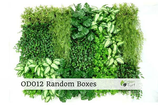 OD012 Random Boxes