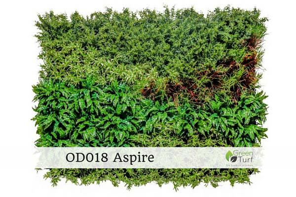 OD018 Aspire