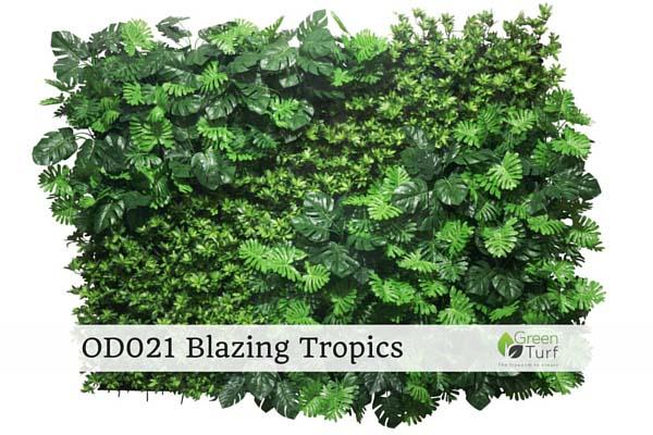 OD021 Blazing Tropics