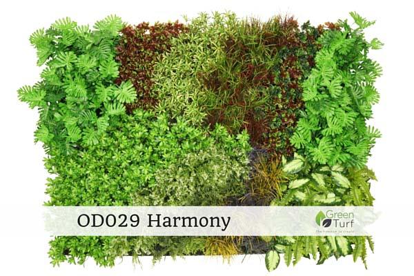 OD029 Harmony