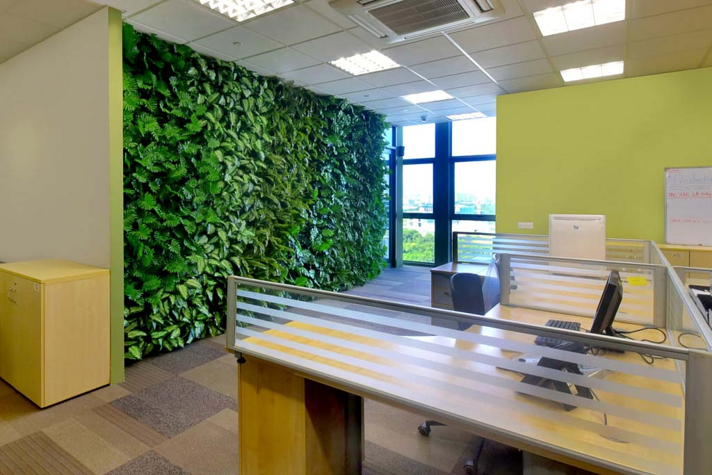 wall pictures for office. office feature wall using artificial plants greenturf asia pictures for