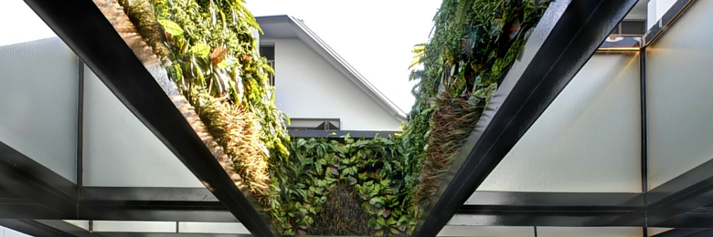 Vertical Garden Trends