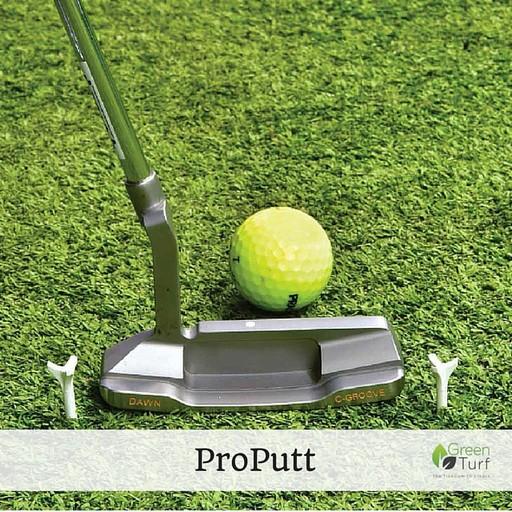 GreenTurf ProPutt
