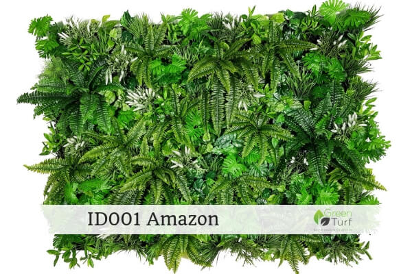 ID001 Amazon