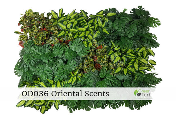 OD036 Outdoor Artificial Green Wall Oriental Scents