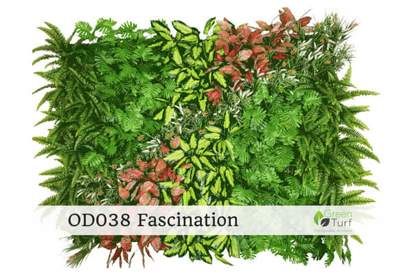 OD038 Outdoor Artificial Green Wall Fascination