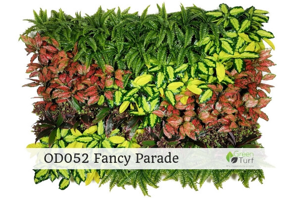 OD052 Outdoor Artificial Green Wall Fancy Parade