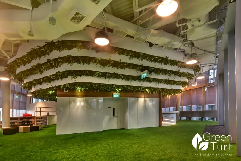 Transporting Visitors and Employees to a Calmer State of Mind with Green Hanging Plants