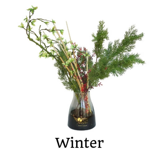 Green Therapy Winter Plant Arrangement