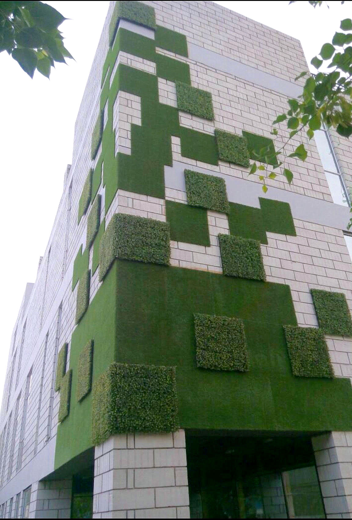 Feature Wall Greenturf Asia