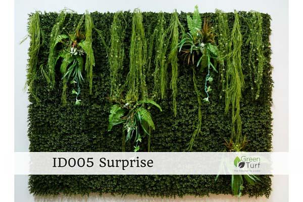 ID005 Surprise