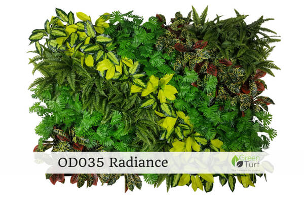 OD035 Outdoor Artificial Green Wall Radiance